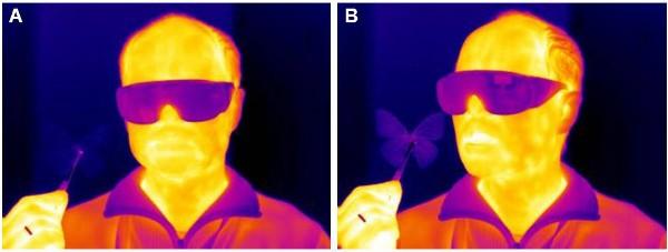 GE butterfly sensor